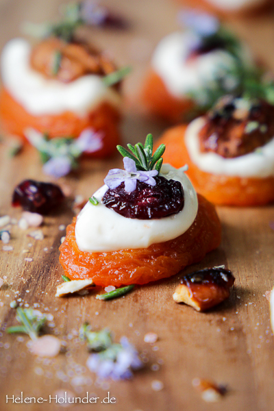 aprikosen-snack-pecan-cranberry-rosmarin-tofu-helene-holunder-2